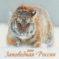 Заповедная Россия. Календарь (285*285) 2019