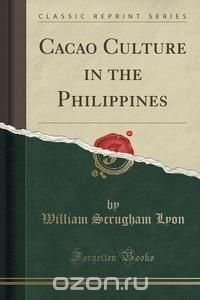 analysis of philippines a century hence essay Should jose rizal be the philippine's national hero and he wrote about the philippines a century from where he was  essays related to jose rizal 1 jose rizal.