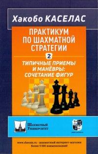 Практикум по шахматной стратегии 2. Типичные приемы и маневры: сочетание фигур