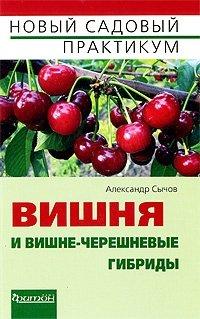 Вишня и вишне-черешневые гибриды