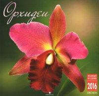 Календарь 2016 (на скрепке). Орхидеи / Orchids