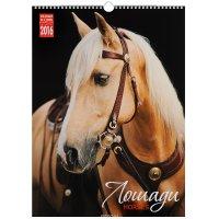 Календарь 2016 (на спирали). Лошади / Horses