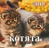 Календарь 2019 (на спирали). Котята