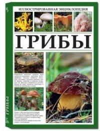 Иллюстрированная энциклопедия. Грибы