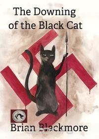 The Downing of the Black Cat