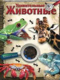 Стрекоза.Книга с лупой.Удивительные животные