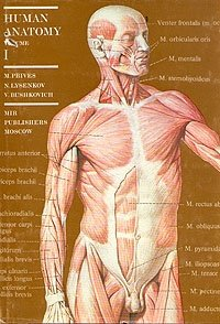 Human anatomy. Volume 1