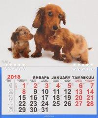 Календарь 2018 (на спирали). Таксы