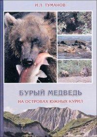 Бурый медведь на островах Южных Курил
