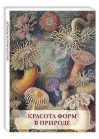 Набор открыток Открытки Красота форм в природе