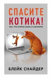 Спасите котика! Все, что нужно знать о сценарии