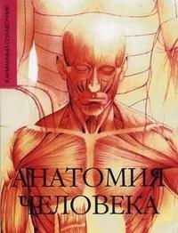 Анатомия человека. Карманный справочник