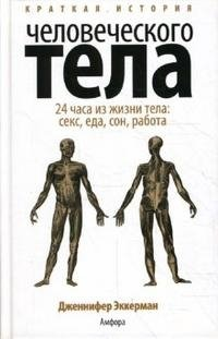 Краткая история человеческого тела. 24 часа из жизни тела. Секс, еда, сон, работа