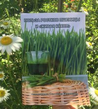 Польза ростков пшеницы и живая кухня