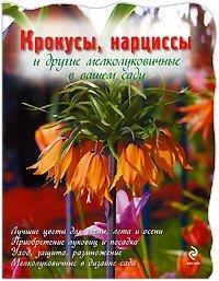 Крокусы, нарциссы и другие мелколуковичные в вашем саду