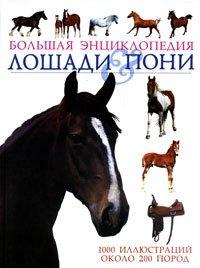 Лошади & пони. Большая энциклопедия