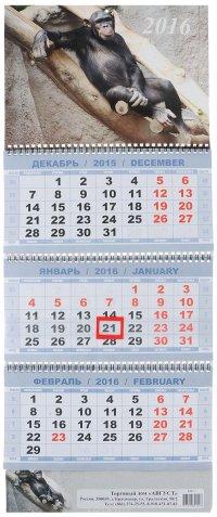 Календарь 2016 (на спирали). Символ года